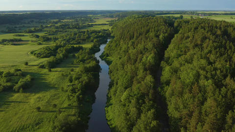 Aerial River & Forest In Lithuania Live Action