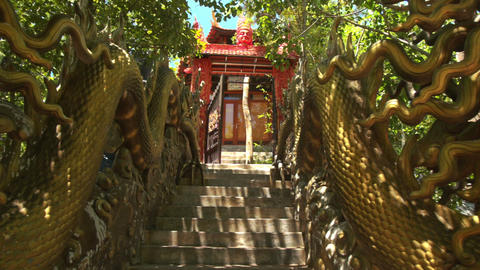 Traditional Dragon Sculptures in Buddhist Temple Park Live Action