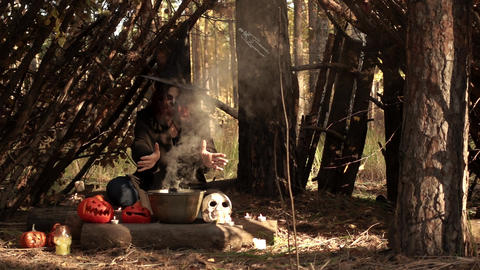 Magic ritual in nature sorceress in the smoke slow motion Live Action