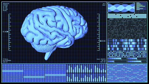 3D Rendering Anatomical Brain Rotating in Futuristic Brain Analysis Technology HUD concept including Animation