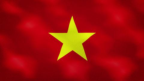 Vietnam dense flag fabric wavers, background loop Acción en vivo