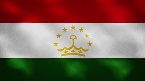 Tajikistan dense flag fabric wavers, background loop Acción en vivo