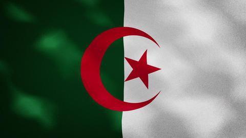 Algerian dense flag fabric wavers, background loop Acción en vivo
