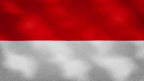 Indonesian dense flag fabric wavers, background loop Acción en vivo