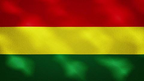 Bolivian dense flag fabric wavers, background loop Acción en vivo