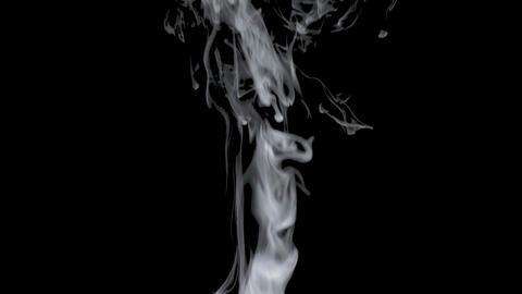 Smoke Loop 5 ライブ動画