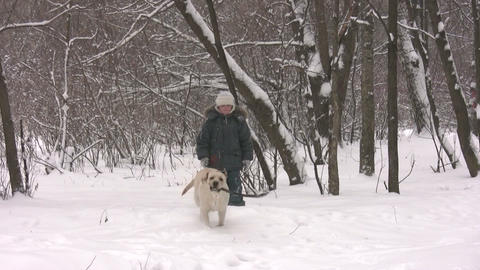 boy with dog in winter wood Stock Video Footage