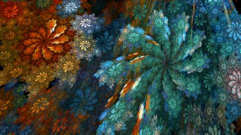 Flower spirals Stock Video Footage