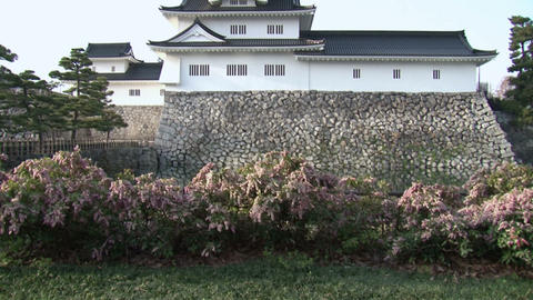 Toyama / Azumi Castle with Flowers 富山 安住城... Stock Video Footage