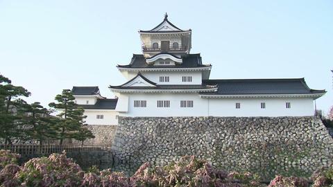 Toyama / Azumi Castle with Flowers 富山 安住城 チルト Footage