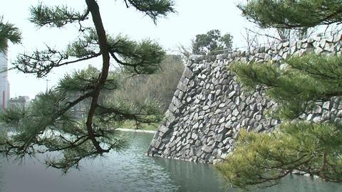 Toyama / Azumi Castle Moat 富山 安住城 Stock Video Footage