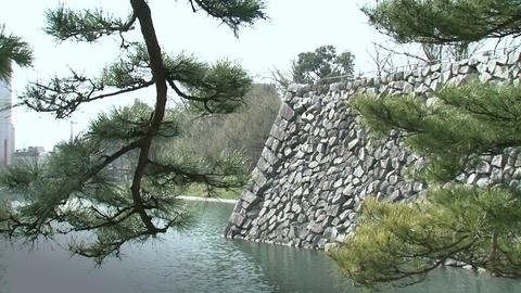 Toyama / Azumi Castle Moat 富山 安住城 Footage