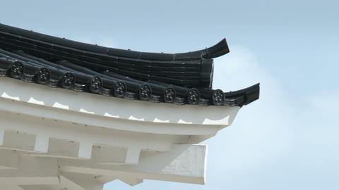 Toyama / Azumi Castle Eave, 富山 安住城 Stock Video Footage