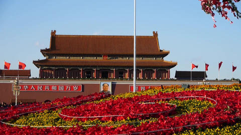 gorgeous parterre full of flowers.Beijing Tiananmen Square Stock Video Footage