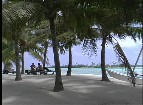 Palm trees providing shade on a white sandy beach on... Stock Video Footage