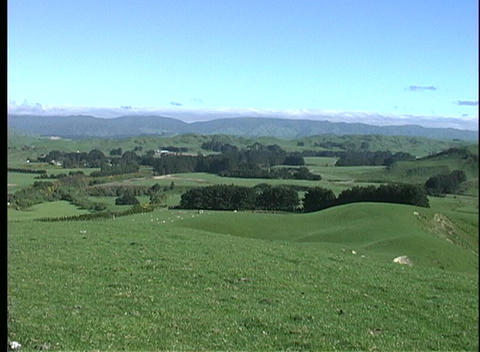 A scenic view of rolling hills and green fields in New Zealand Footage