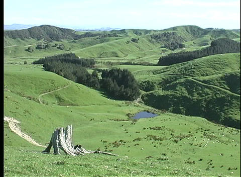 Pan-right over rolling hills and valleys of a New Zealand... Stock Video Footage