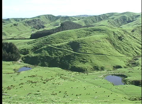 Pan-right over rolling hills and valleys of a New Zealand farm Footage