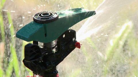 Close up of sprinkler spraying water in Oak View, California Stock Video Footage