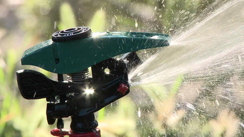 Close-up on a sprinkler shutting off in Oak View, California Stock Video Footage