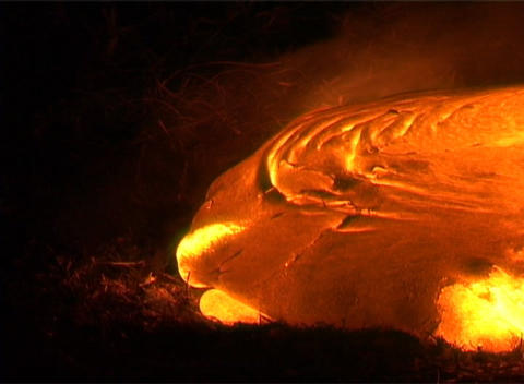 Molten lava from a volcano slowly oozes, sending up smoke Stock Video Footage