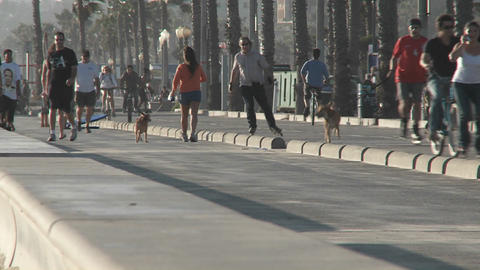 Pedestrians exercising near Santa Monica, California Stock Video Footage