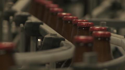 Bottles zip along a conveyor belt in a bottling plant Live Action