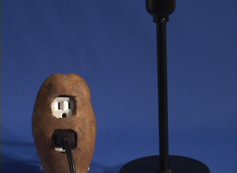 Tilt up from a potato to a light bulb which lights up, symbolizing new sources of energy Footage