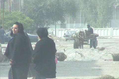 An oxcart makes its way across central Baghdad as veiled Muslim women pass by Footage