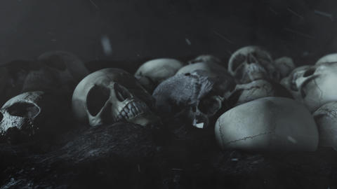 Black Raven and Human Skulls in a Field Live Action