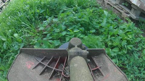 Start trim grass with lawn mower at stacked bricks in the garden corner. Brushcutter blades at work Live Action
