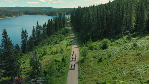 Cyclists ride up beautiful forest gravel road Live Action