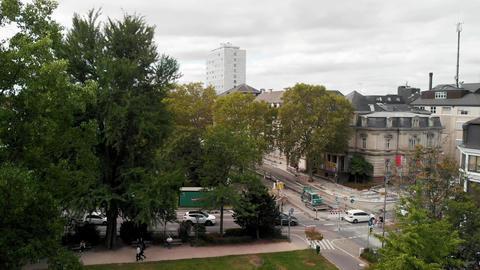 HEIDELBERG, GERMANY - SEPTEMBER 2019: Heidelberg park aerial view in summer Live Action