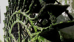 Waterwheel covered in moss Footage
