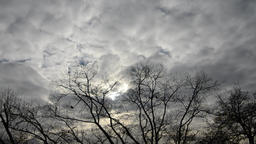 Rain clouds moving over trees Footage