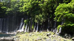 Shiraito No Taki Waterfall, Shizuoka Prefecture, Japan Footage