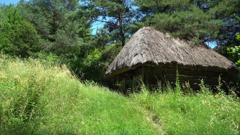 Old, medieval, traditional Ukrainian rural house on a hill in the forest Live Action