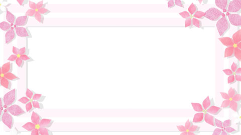 Blooming Animation Pink Frame CG動画
