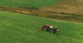 Tractor in a Field of Rapeseed Processing Footage