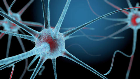 3D neuron cells network structure animation Animation