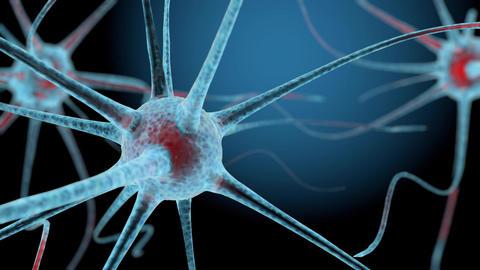 3D neuron cells network structure animation CG動画