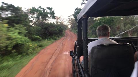 Yala, Sri Lanka, November 30, 2019, tourists ride in a jeep on a village road Live Action