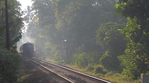 train moves among green nature transporting local people Live Action