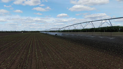 Watering systems on the fields with dry ground, amazing landscape, 4k Live Action