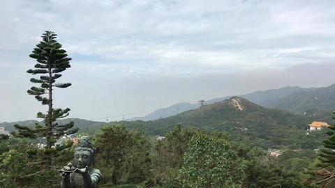 Hong Kong, China, A tree with a mountain in the background Acción en vivo