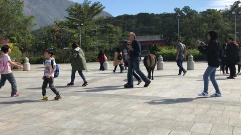 Hong Kong, China, November 20 2016: A group of people walking on a sidewalk Acción en vivo