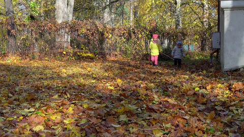 Little brother and sister raking leaves in garden on an Autumn day GIF