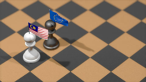 Chess Pawn with country flag, Malaysia, European Union Animation