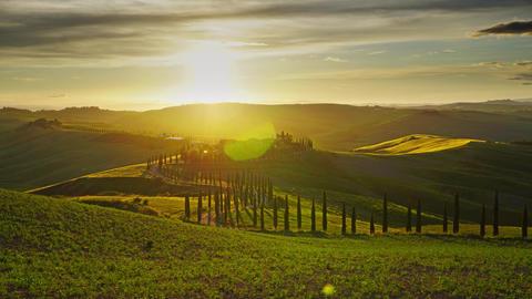 Tuscany landscape road cypresses hill sunset Acción en vivo