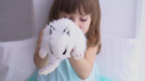 Pretty teen girl having fun, hugging and playing with decorative rabbit Live Action